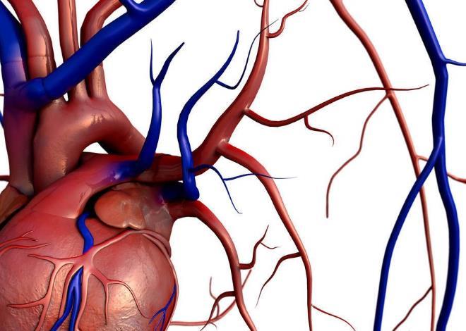 心血管疾病
